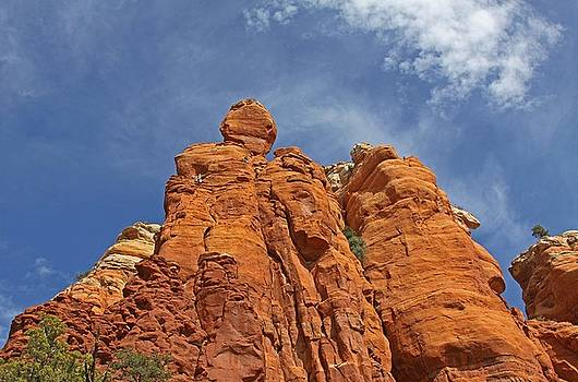 Climbing Skyward by Gary Kaylor
