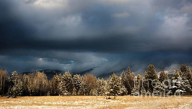 Clinging Clouds of Winter by Janie Johnson