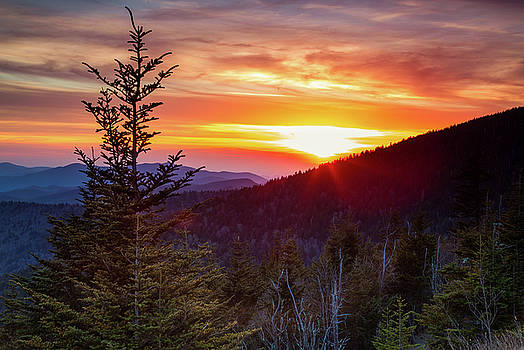 Clingmans Spring Sunset  by Jackie Novak