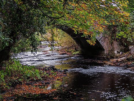 Clondegad Bridge in Autumn by James Truett
