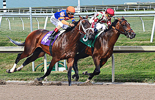 Close Horse Race by Allan Einhorn