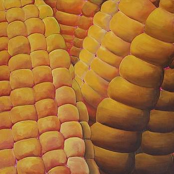 Close-up Corn by Lori A Johnson