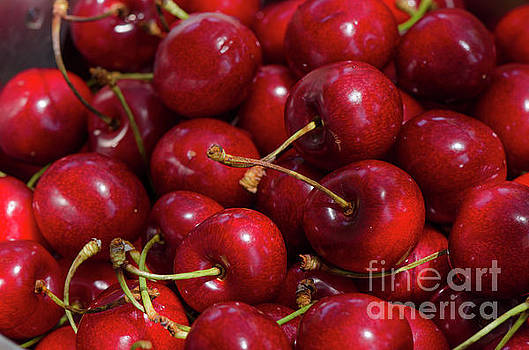Close up of fresh ripe red cherries, cherry, fruit by Perry Van Munster