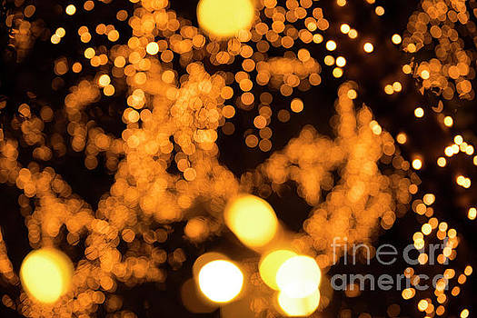 Close up of gold bokeh by Rob D
