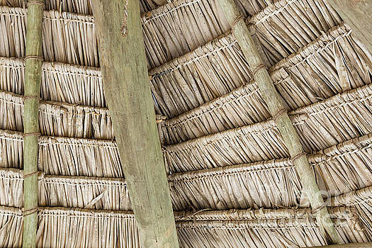Close-up of hanging edge of thatched umbrellas on beach by Mariusz Prusaczyk