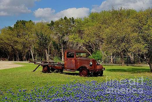 Close up of Rusty Pickup by Janette Boyd