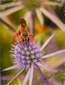 Close up spider wasp on a thistle. by Rusty R Smith