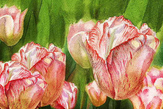 Irina Sztukowski - Close Up Tulips