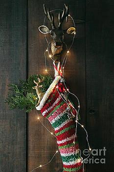 Sandra Cunningham - Closeup stripe wool stocking with lights