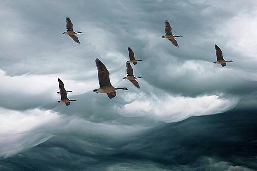 Cloud mountains by John Stuart Webbstock