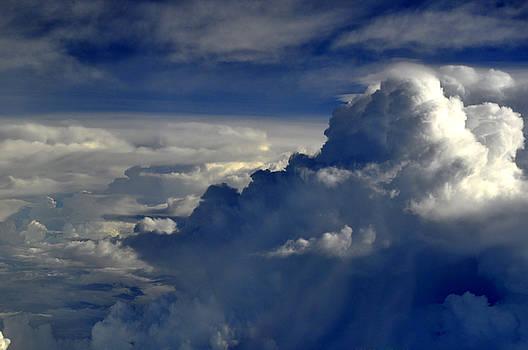 Bliss Of Art - Cloud view