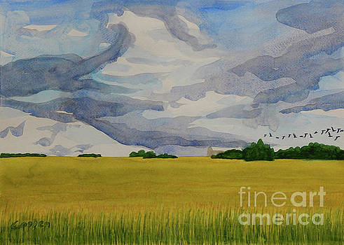 Clouds and Crows and Hay by Robert Coppen