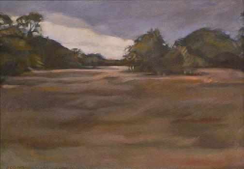 Clouds and Fields by Kim Gordon