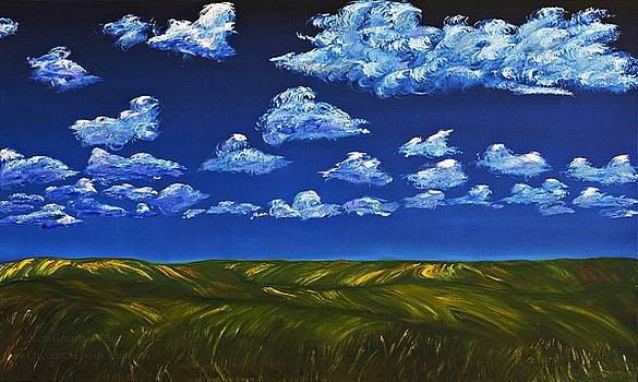 Clouds and Grass Field by Gregory Allen Page