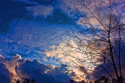 Clouds and Tree by John Scholey