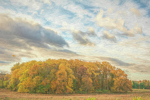 Clouds and Trees by Jeff Oates Photography