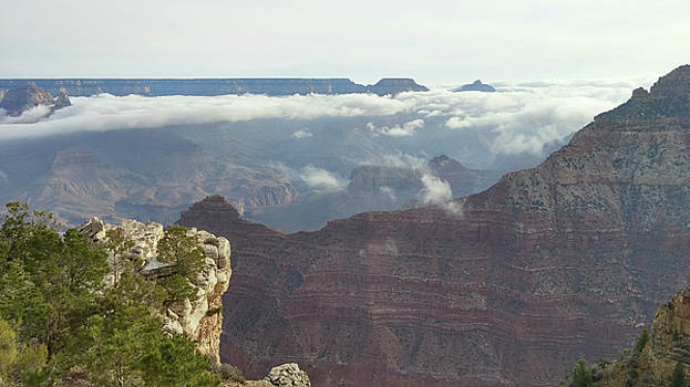 Clouds in the Grand Canyon by Liza Eckardt