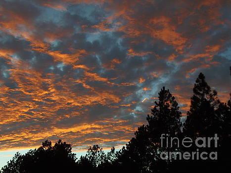 Clouds by Isabel Honkonen