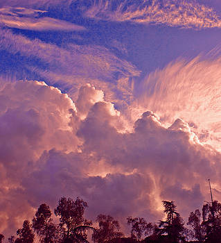 Clouds over a Wood by John Scholey