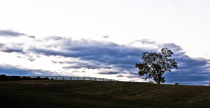 Clouds over the Tree by George Lovelace