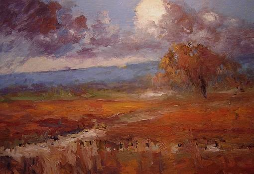 Clouds over the vineyard by R W Goetting