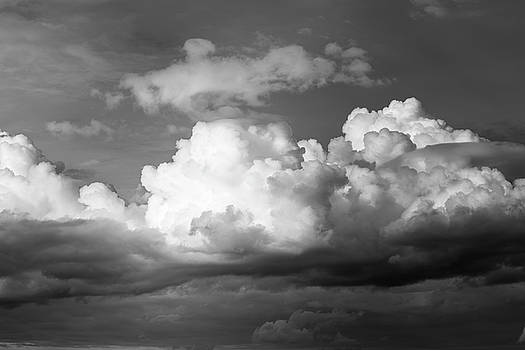 Cloudscape by David Taylor