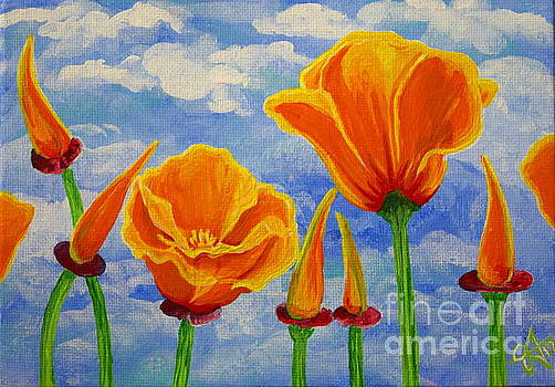 Cloudy California Poppies Sky Orange Wildflowers Flowers Bright Bold Colors Beautiful by Jackie Carpenter