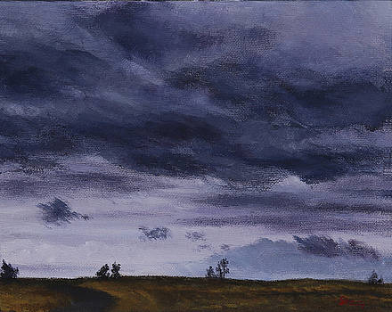 Cloudy Day by Stacy Williams