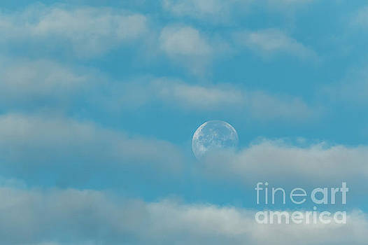 Cloudy Morning Moon at First of June by Edie Ann Mendenhall