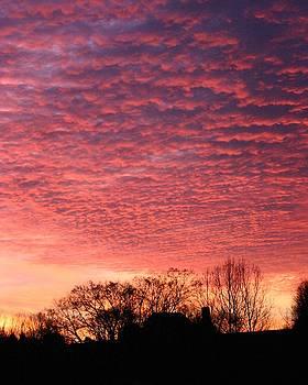 Cloudy Sunrise by Carla Neufeld
