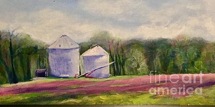Clover Field and Silo's by Manuela Woolsey