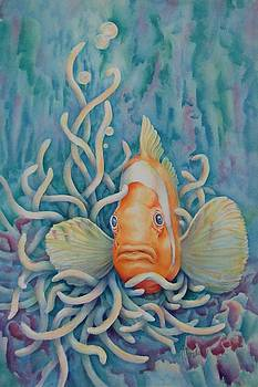 Clown Fish by Mary Lillian White