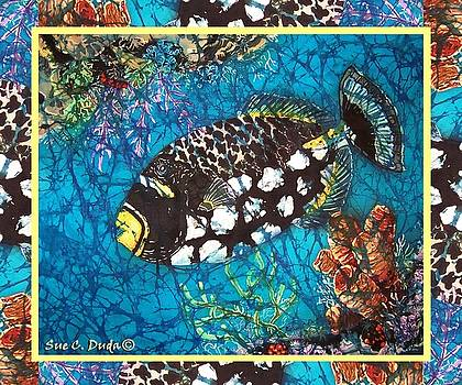Sue Duda - Clown Triggerfish-Bordered