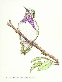 Clyde the Calliope Hummingbird by Sue Bonnar