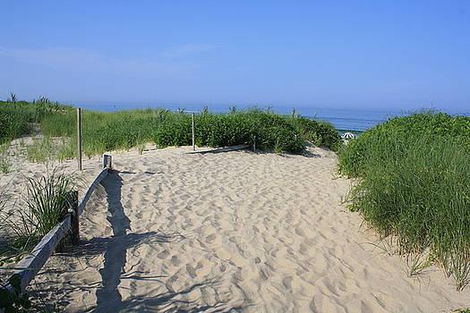 Donna Walsh - Coast Guard Beach CCNS