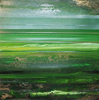 Coast Series Green AM7 by Mike   Bell