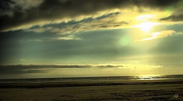 Coastal Evening by John Winner