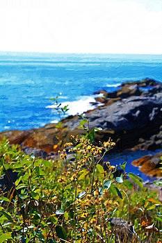 Coastal Flowers by John Ellis