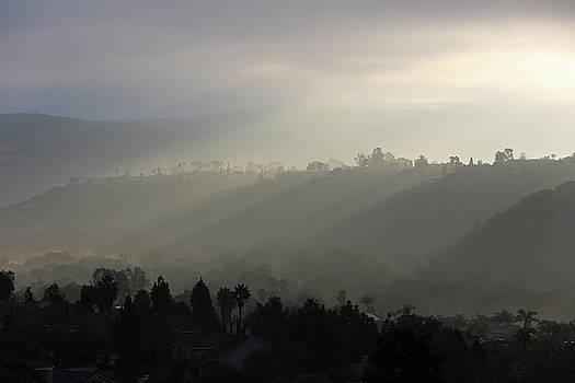 Robin Street-Morris - Coastal Fog