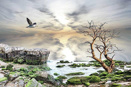 Coastal landscape  by Angel Jesus De la Fuente