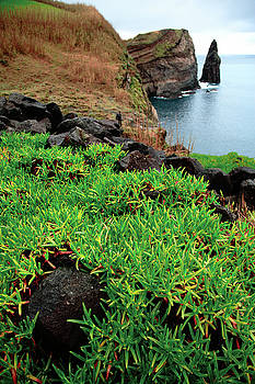 Gaspar Avila - Coastal landscape in Azores