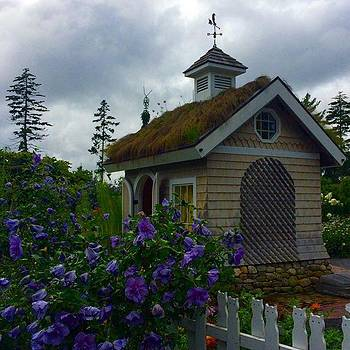 Coastal Maine Botanical Gardens by Kerri Ann Crau