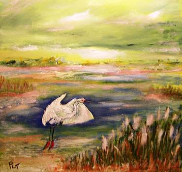 Coastal Marsh with White Heron by Patricia Taylor