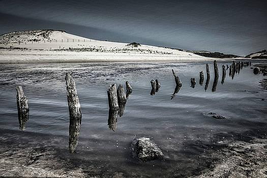 Debra and Dave Vanderlaan - Coastal Memories in Black and White