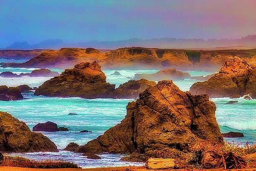 Coastal Mendocino Mist by Garry Gay