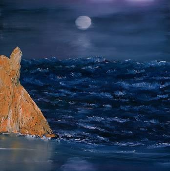 Coastal Moonlight by David Snider