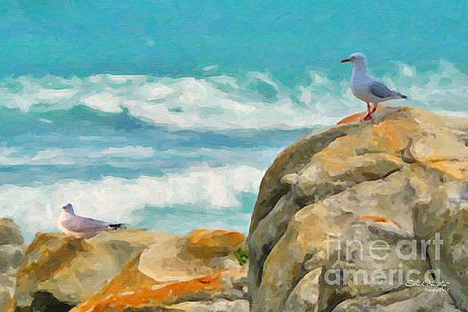 Coastal Rocks by Chris Armytage