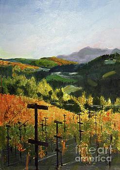 Donna Walsh - Coastal Sonoma Vineyard
