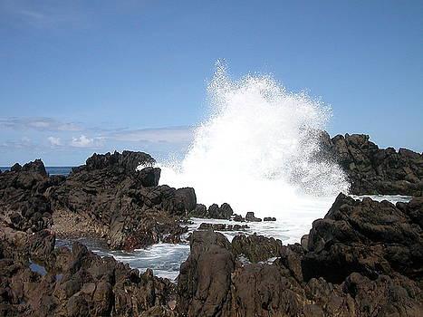 Coastal Spray by Kevin Streat