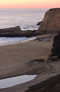 Coastal Tide Pool by Grace Dillon